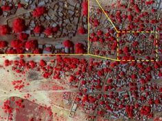 Leading human rights groups on Thursday liberated satellite pictures asserting to show huge ruination by Boko Haram of two Nigerian towns in what is a