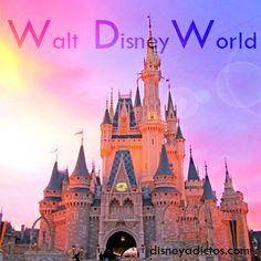 """No nos cansamos de ver el castillo de """"La Cenicienta"""" de Walt Disney World. Sus 55 metros de altura y su estilizada forma nos recuerdan que los sueños son posibles ;) Viaje A Disney World, Walt Disney World, Mundo Walt Disney, Disney Love, Barcelona Cathedral, Orlando, Travel, Shape, Cinderella Castle"""