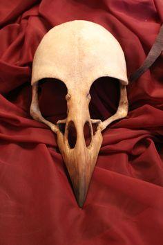 Crow/Raven Bird Skull Mask in 2019 Raven Bird, Crow Bird, Crow Skull, Skull Mask, Crane, Tatoo Bird, Bird Skull Tattoo, Sister Tatto, Friday The 13th Tattoo