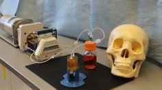 Bioreactor grow your own bone.jpg