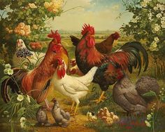 Home Decoration Needlework diamond mosaic DIY Diamond Painting Cross Stitch Square Diamond Embroidery Mosaic picture cock Rooster Painting, Rooster Art, Rooster Plates, Chicken Painting, Chicken Art, The Barnyard, Chickens And Roosters, Fashion Painting, Cross Paintings