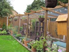 This is a cat run, but I like it for an idea for a chicken run too.Cat Runs & Cat Proofed Gardens - Page 11 - Pet Forums Community Outdoor Cat Enclosure, Rabbit Enclosure, Garden Enclosure Ideas, Chicken Enclosure, Reptile Enclosure, Gatos Cats, Cat Playground, Playground Design, Cat Garden