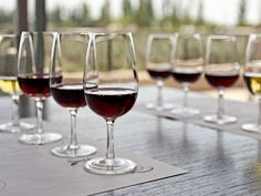 Wine Tasting Engages Your Brain More Than Any Other Behavior, Says Neuroscientist Sangria Wine, Wine Drinks, Beverages, Wine Guide, Wine Deals, Cheap Wine, In Vino Veritas, Italian Wine, Wine And Spirits
