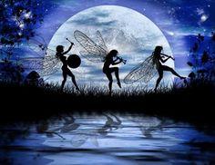 Fairies dancing in the moonlight!