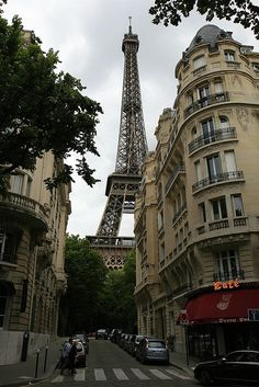 The Eiffel Tower as our Guide (Rob Shenk)