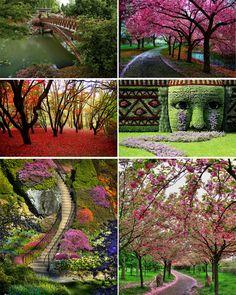 Espacios Maravillosos: Jardines