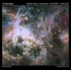 This huge Hubble Space Telescope mosaic, spanning a width of 600 light-years, shows a star factory of more the 800,000 stars being born. The stars are embedded inside the Tarantula Nebula. Image Credit: NASA, ESA, and E. Sabbi/STScI