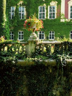 Lancut Palace, Poland  // Great Gardens & Ideas //