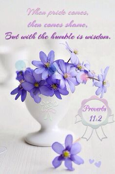 "Proverbs‬ ‭11‬:‭2‬ - ""When pride comes, then comes shame, but with the humble is wisdom. #Bible #quotes"