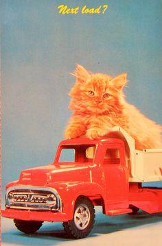 Chaton sur un camion jouet. Vehicles, Vintage, Red Heads, Kitty, Wild Animals, Truck, Cat Breeds, Cards, Vintage Comics