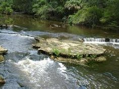 Steinhatchee Falls, a historic spot on the Steinhatchee River near Steinhatchee, Florida.