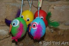 A flock of colourful Easter birds and owls!