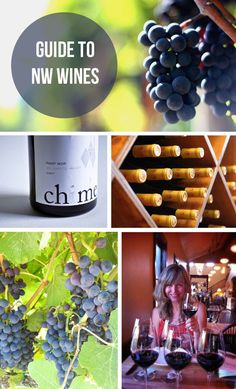 Guide to wines of the Pacific Northwest and pairing with food tips, http://www.yourwinecellar.org