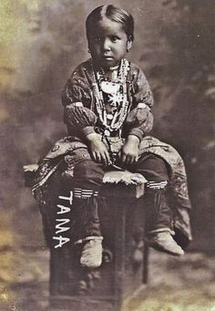 Native American Children, Native American Photos, Native American History, Native American Indians, Native Americans, Walk In The Spirit, Indian Pictures, Indian People, Native Indian