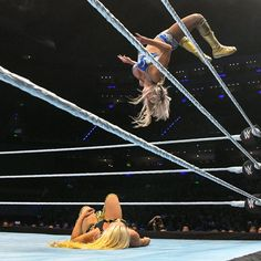 WWE DIVA Wrestling LICENSED Divas un-signed picture poster pic 8x10 photo EVE