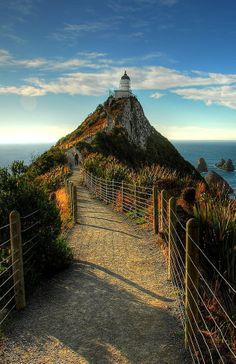 Nugget Point Lighthouse, The Catlins NZ