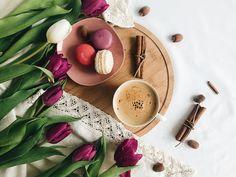 •🌱M a C a R o N s  pleasure🌱• • • • • • • • • • • • • • • • • • • • • • #vsco #vscomood #morning #vibes #flower #beauties #breakfast #morning #coffee #lovely #feed #plants #vibes #discoverromania #table #photography #vscomood #vscofilter #vscobooks #books #eucitesc #morningvibes #wintervibes #vscomorning #vscophotos #vscopleasure #inlove #mywork #myownphoto #original #beyou #daliasstory #macarons