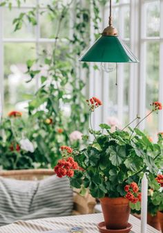 Interior Windows, Interior And Exterior, Fresco, Hygge Home, Cozy Corner, Slow Living, Scandinavian Home, Cool Rooms, Home Decor Inspiration