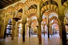 UN BOSQUE DE COLUMNAS Un bosque de columnas –quedan 856 de las 1.013 originales– soportan su cubierta, apoyada en arcos dobles de herradura y de medio punto en su mayoría.