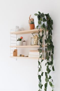 Scandinavian Shelves, Scandinavian Office, Living Room Scandinavian, Office Wall Shelves, Shelves In Bedroom, Room Ideas Bedroom, Bedroom Decor, String Regal, String Shelf
