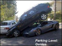 Park level genius