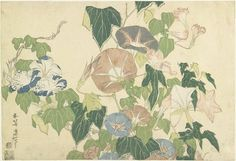 Katsushika Hokusai  Frog and Morning Glories c. 1832 葛飾北斎