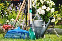 porządkowanie zieleni porządkowanie ogrodu