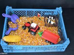 The sensory tray of the farm - animals