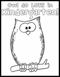 back to school owl learn lots in kindergarten colouring book shows activities