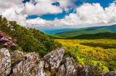 View of the Blue Ridge from cliffs on Stony Man Mountain in Shenandoah National Park, VA.   Flickr - Photo Sharing!