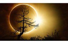 21 Ağustos Güneş Tutulması' nın burçlara etkileri