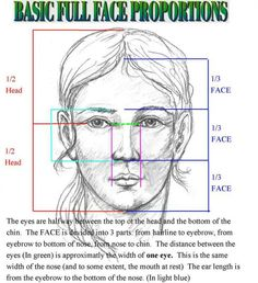 how to draw human face proportions Pencil Art, Pencil Drawings, Art Drawings, Drawing Faces, Drawing Drawing, Human Drawing, Basic Drawing, Drawing Hair, Horse Drawings