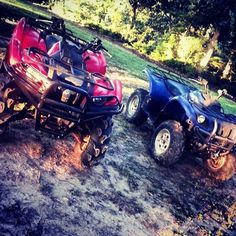 """Grizzly bears"" Fan photo from Nate #yamahagrizzly"
