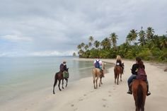 Horse riding Punta Hicaco, Miches, Dominican Republic. www.stable-mates.com