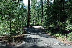 Farewell Bend 051 - Farewell Bend Rogue River Campsite Photos - campsitephotos.com