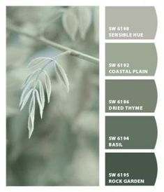 25 trendy farmhouse paint colors interior sherwin williams chips 25 trendy farmhouse paint co Sage Green Paint, Green Paint Colors, Paint Color Schemes, Bedroom Paint Colors, Bathroom Colors, Wall Colors, Farmhouse Paint Colors, Exterior Paint Colors For House, Paint Colors For Home