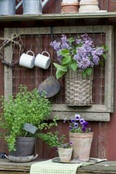 Chicken wire. For above the potting bench
