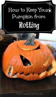 How to Keep Your Halloween Pumpkin from Rotting - The Prudent Patron