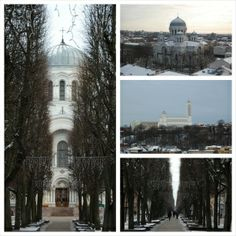 Collage. Beautiful tree-lined streets near our #ParkInn #Kaunas hotel in Lithuania