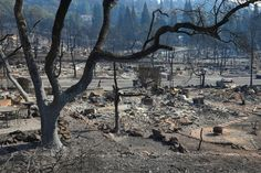 Even as the fires still burn, public health officials and environmental cleanup experts are starting to think about the next chapter of the disaster.