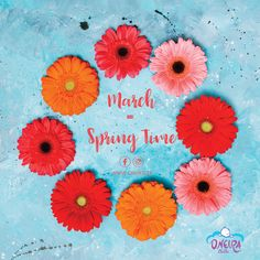 #WelcomeMarch #firstofmonth #instalove #fridaymood #springtime #spring #loveflowers