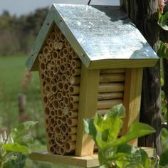 Bee Bug House
