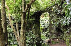 Estadias para férias ( Açores , Portugal ) : Trilhos , Ilhas dos Açores , Azores Trails