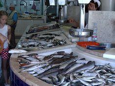 lagos portugal fish market