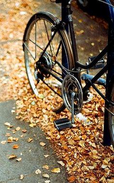 autumn bike ride...