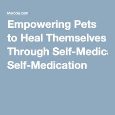Empowering Pets to Heal Themselves Through Self-Medication