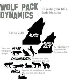 Wolf ranks (simplified)