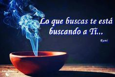 Twitter, Paz Interior, Google, Quotes, Casual, Instagram, Texts, Amor, Soul Food