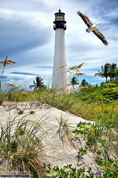 Cape Florida Lighthouse in Bill Baggs State Park, FL