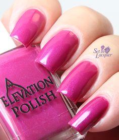 Elevation Polish Purple Queen Anthias